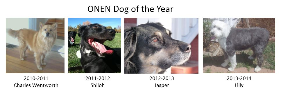 2014-2015 Dog of the Year Nominations
